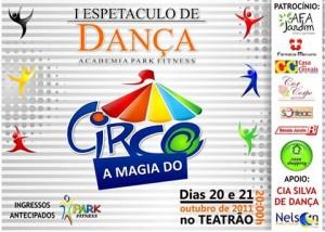 parkacademia_amagiadocirco_2011_cartaz